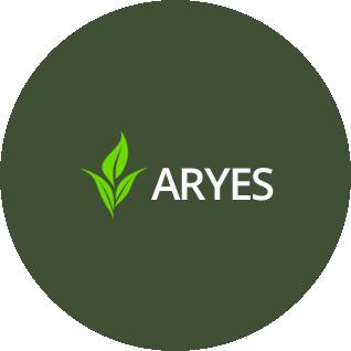 logo-aryes